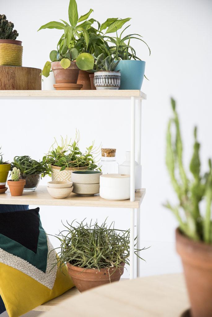 set-design, mobilier et végétaux, agence PARADE